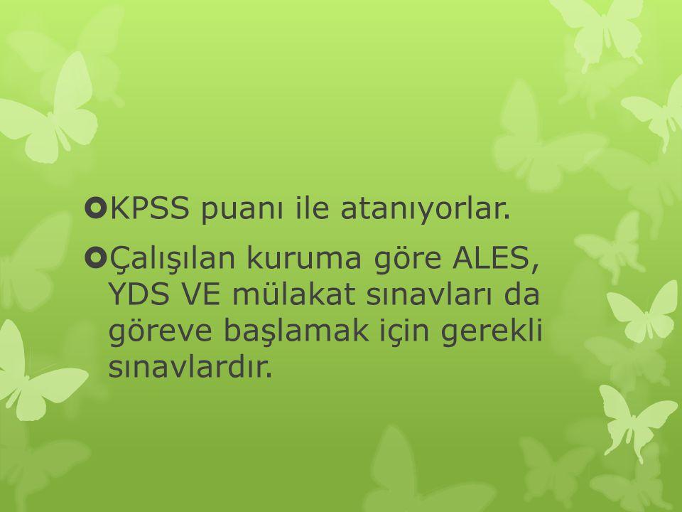  KPSS puanı ile atanıyorlar.  Çalışılan kuruma göre ALES, YDS VE mülakat sınavları da göreve başlamak için gerekli sınavlardır.