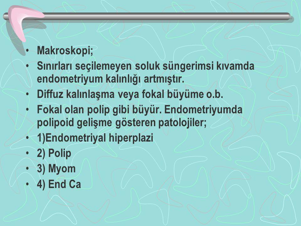Makroskopi; Sınırları seçilemeyen soluk süngerimsi kıvamda endometriyum kalınlığı artmıştır.