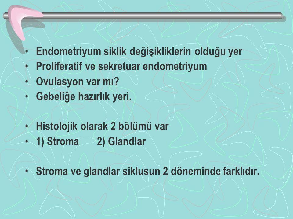 Malign Tümörler 1) Epitelyal kaynaklı Endometriyal adenokarsinom 2)Mezenkimal kaynaklı Endometriyal stromal tümörler 3)Mixed Tümörler (Epitelyal ve mezenkimal)