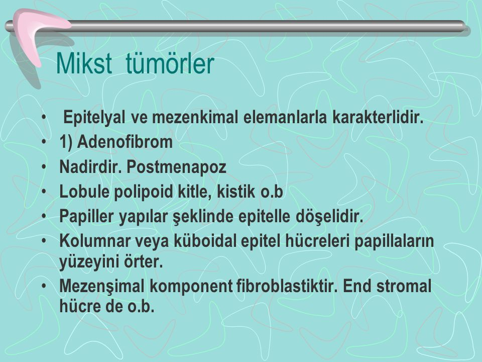 Mikst tümörler Epitelyal ve mezenkimal elemanlarla karakterlidir. 1) Adenofibrom Nadirdir. Postmenapoz Lobule polipoid kitle, kistik o.b Papiller yapı