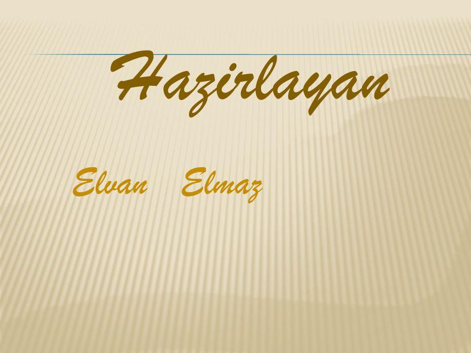 Hazirlayan Elvan Elmaz