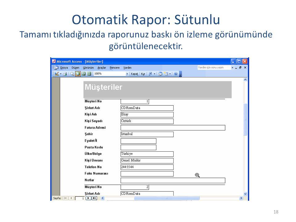 18 Otomatik Rapor: Sütunlu Tamamı tıkladığınızda raporunuz baskı ön izleme görünümünde görüntülenecektir.