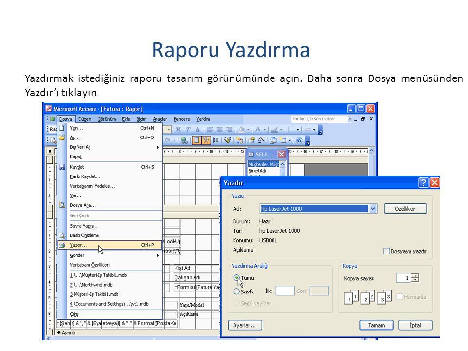 32 Raporu Yazdırma Yazdırmak istediğiniz raporu tasarım görünümünde açın.