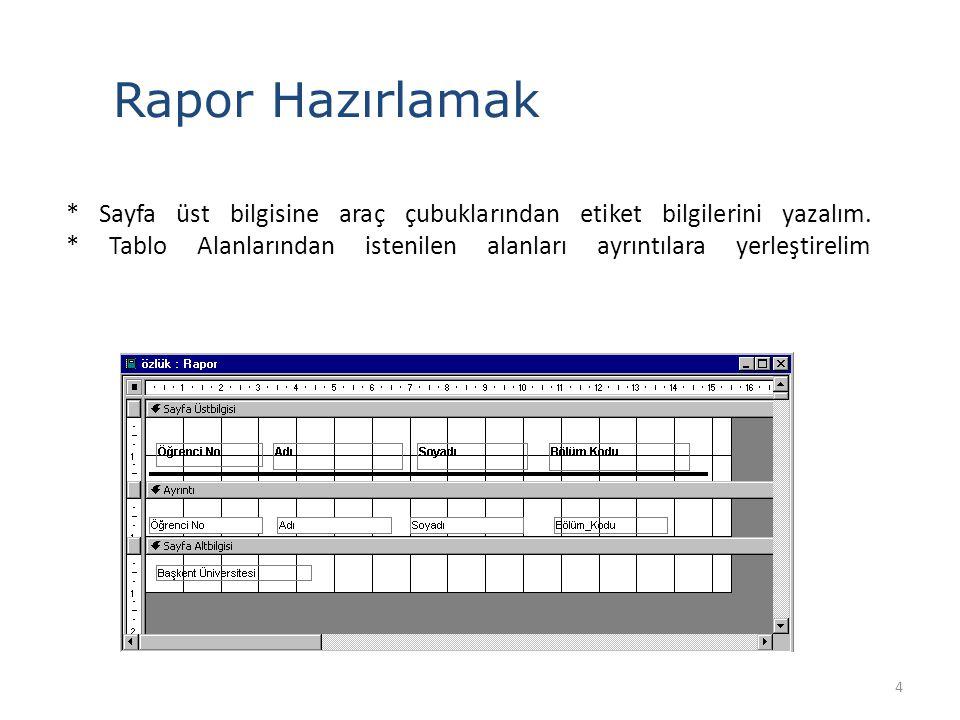 15 Sihirbaz yardımıyla Rapor Oluşturma Raporun adını değiştirebilir ve ön izlemeyi görebilirsiniz