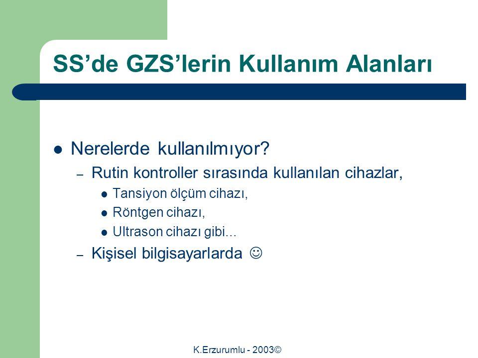 K.Erzurumlu - 2003© SS'de GZS'lerin Kullanım Alanları Nerelerde kullanılmıyor.
