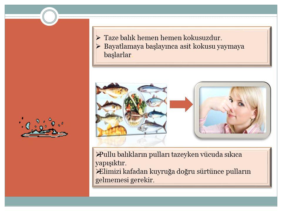  Pullu balıkların pulları tazeyken vücuda sıkıca yapışıktır.  Elimizi kafadan kuyruğa doğru sürtünce pulların gelmemesi gerekir.  Pullu balıkların