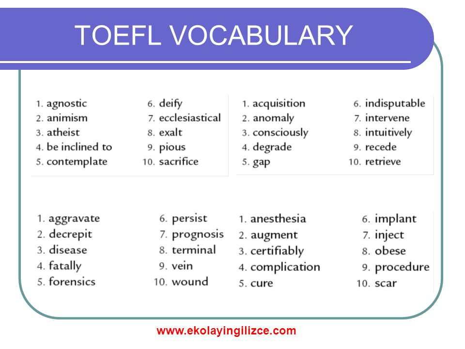 www.ekolayingilizce.com TOEFL VOCABULARY