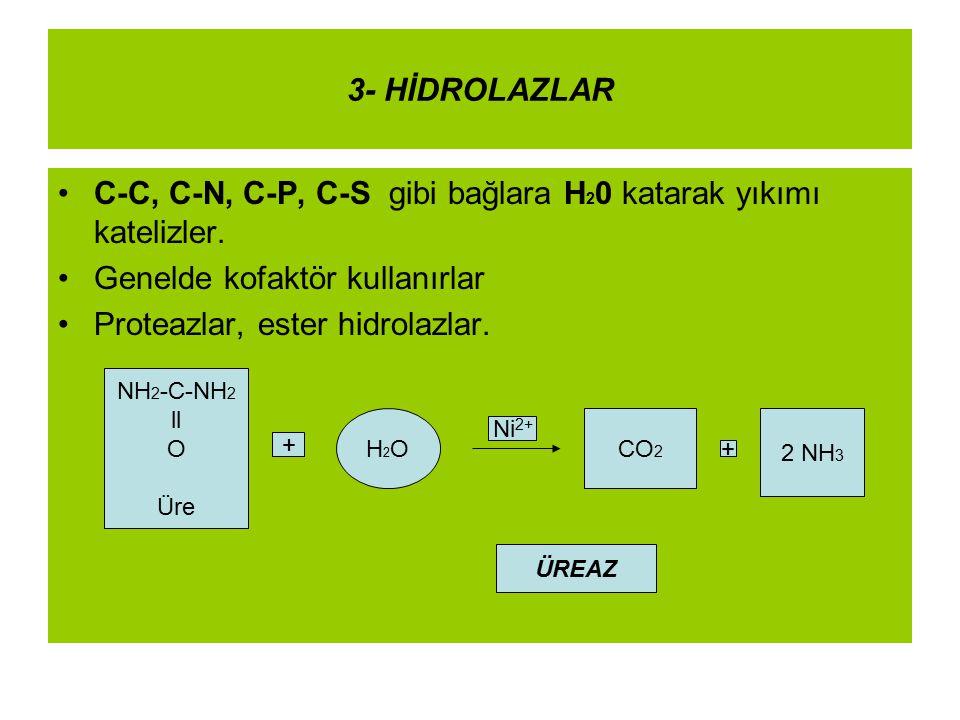 3- HİDROLAZLAR C-C, C-N, C-P, C-S gibi bağlara H 2 0 katarak yıkımı katelizler. Genelde kofaktör kullanırlar Proteazlar, ester hidrolazlar. NH 2 -C-NH