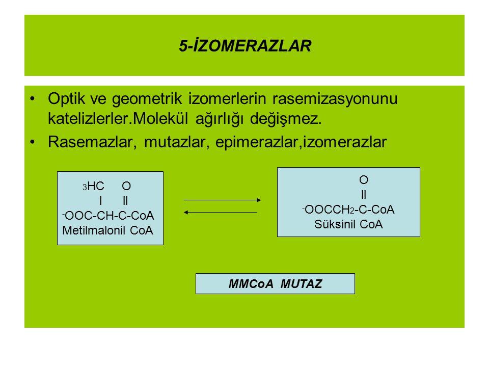 5-İZOMERAZLAR Optik ve geometrik izomerlerin rasemizasyonunu katelizlerler.Molekül ağırlığı değişmez. Rasemazlar, mutazlar, epimerazlar,izomerazlar 3