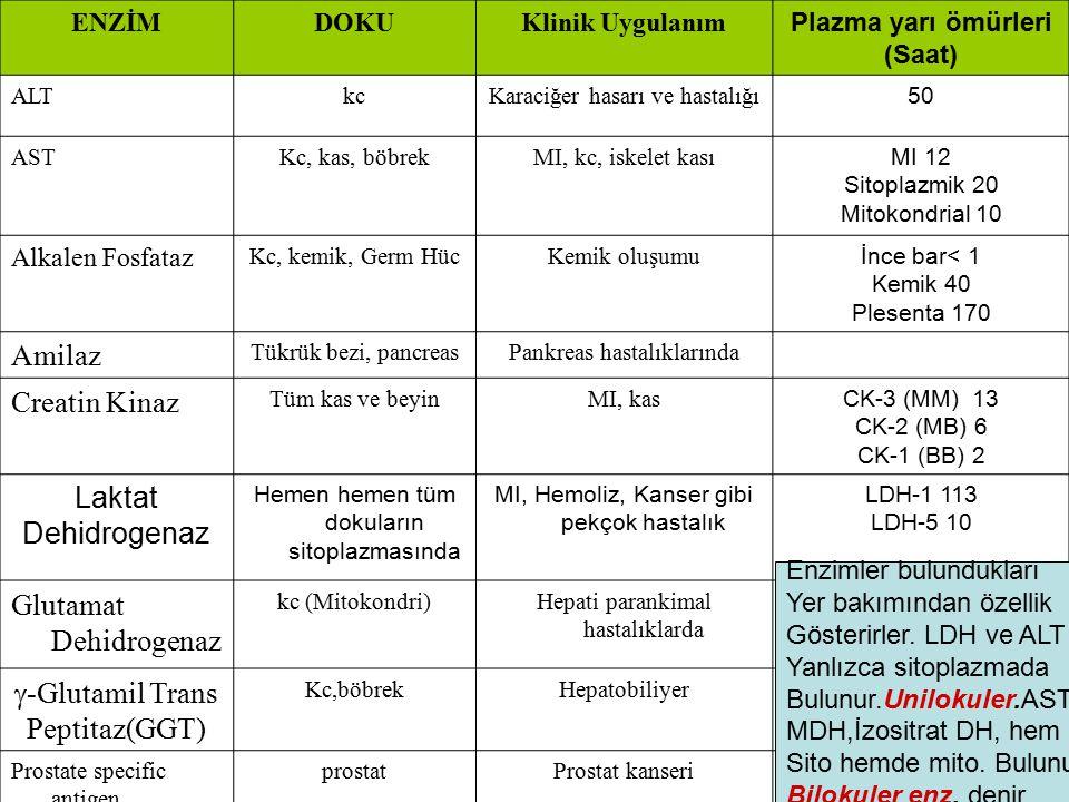 ENZİMDOKUKlinik Uygulanım Plazma yarı ömürleri (Saat) ALTkcKaraciğer hasarı ve hastalığı 50 ASTKc, kas, böbrekMI, kc, iskelet kası MI 12 Sitoplazmik 2