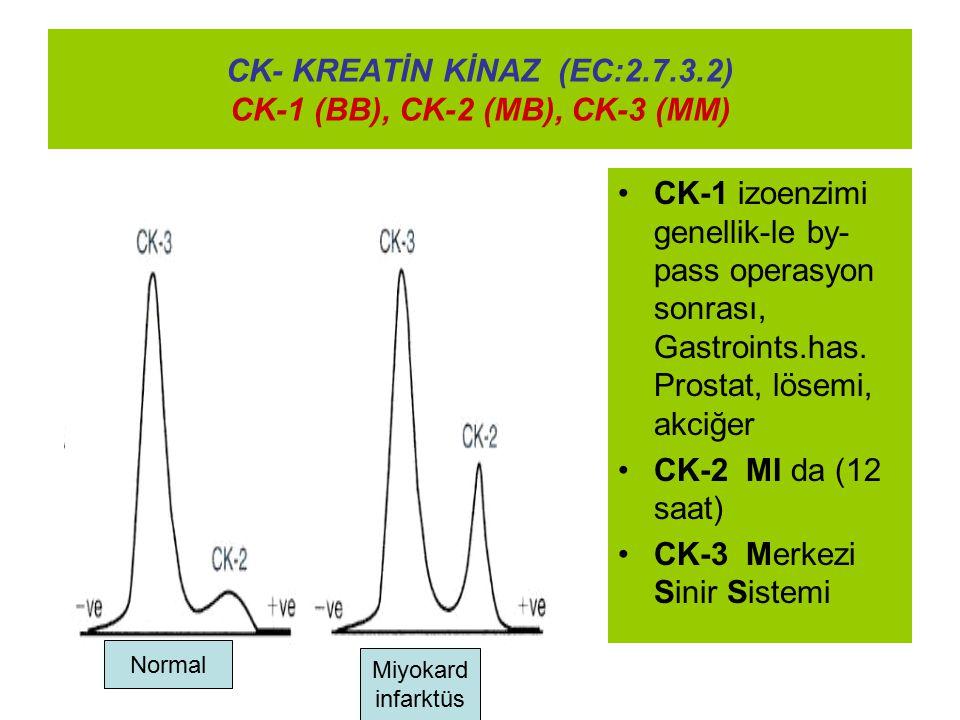 CK- KREATİN KİNAZ (EC:2.7.3.2) CK-1 (BB), CK-2 (MB), CK-3 (MM) CK-1 izoenzimi genellik-le by- pass operasyon sonrası, Gastroints.has. Prostat, lösemi,