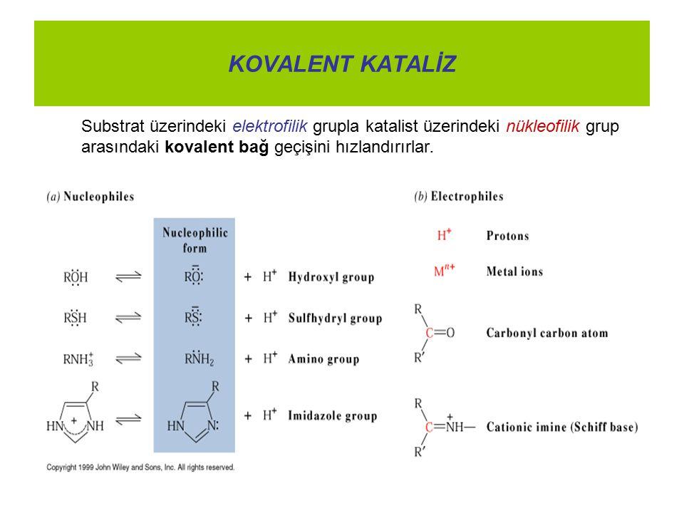 KOVALENT KATALİZ Substrat üzerindeki elektrofilik grupla katalist üzerindeki nükleofilik grup arasındaki kovalent bağ geçişini hızlandırırlar.