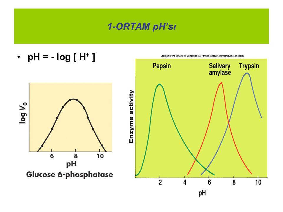 1-ORTAM pH'sı pH = - log [ H + ]