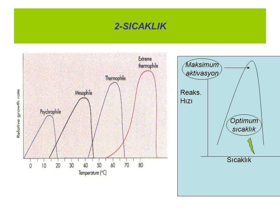 2-SICAKLIK Reaks. Hızı Sıcaklık Maksimum aktivasyon Optimum sıcaklık