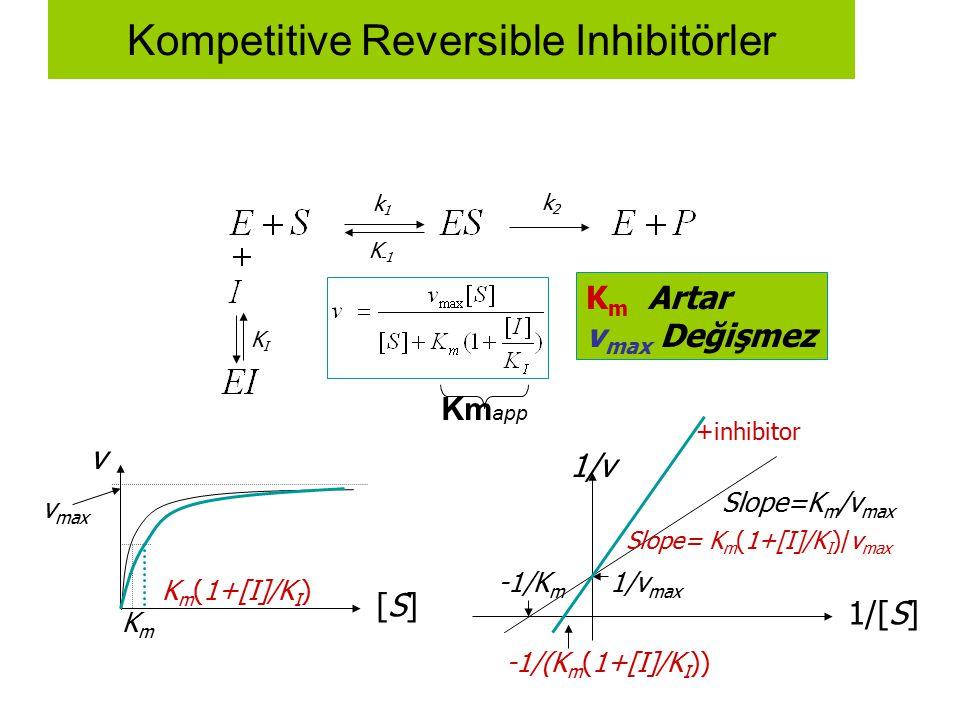 Kompetitive Reversible Inhibitörler v [S][S] v max KmKm 1/[S] 1/v 1/v max -1/K m Slope=K m /v max k1k1 K -1 k2k2 KIKI K m Artar v max Değişmez +inhibi