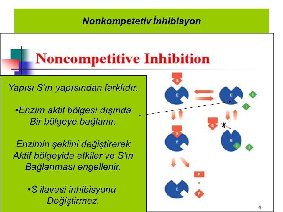 Nonkompetetiv İnhibisyon Yapısı S'ın yapısından farklıdır. Enzim aktif bölgesi dışında Bir bölgeye bağlanır. Enzimin şeklini değiştirerek Aktif bölgey