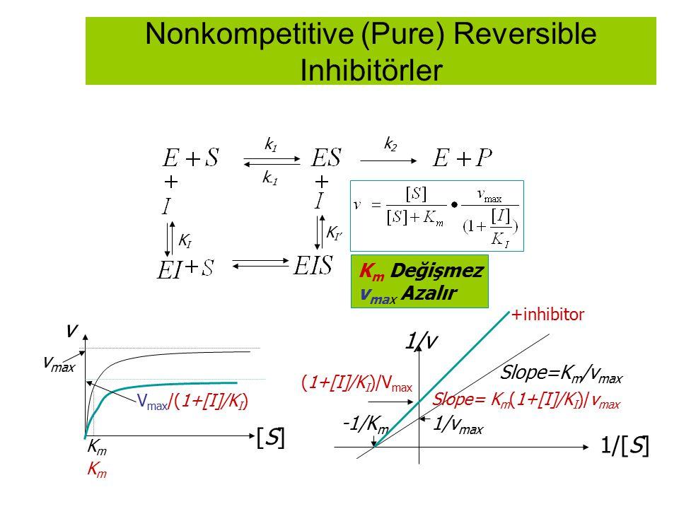 Nonkompetitive (Pure) Reversible Inhibitörler k1k1 k -1 k2k2 KIKI K m Değişmez v max Azalır K I' +inhibitor 1/[S] 1/v 1/v max -1/K m Slope=K m /v max
