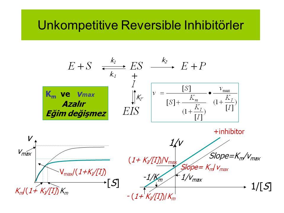 Unkompetitive Reversible Inhibitörler k1k1 k -1 k2k2 K m ve v max Azalır Eğim değişmez +inhibitor K I' 1/[S] 1/v 1/v max -1/K m Slope=K m /v max (1+ K