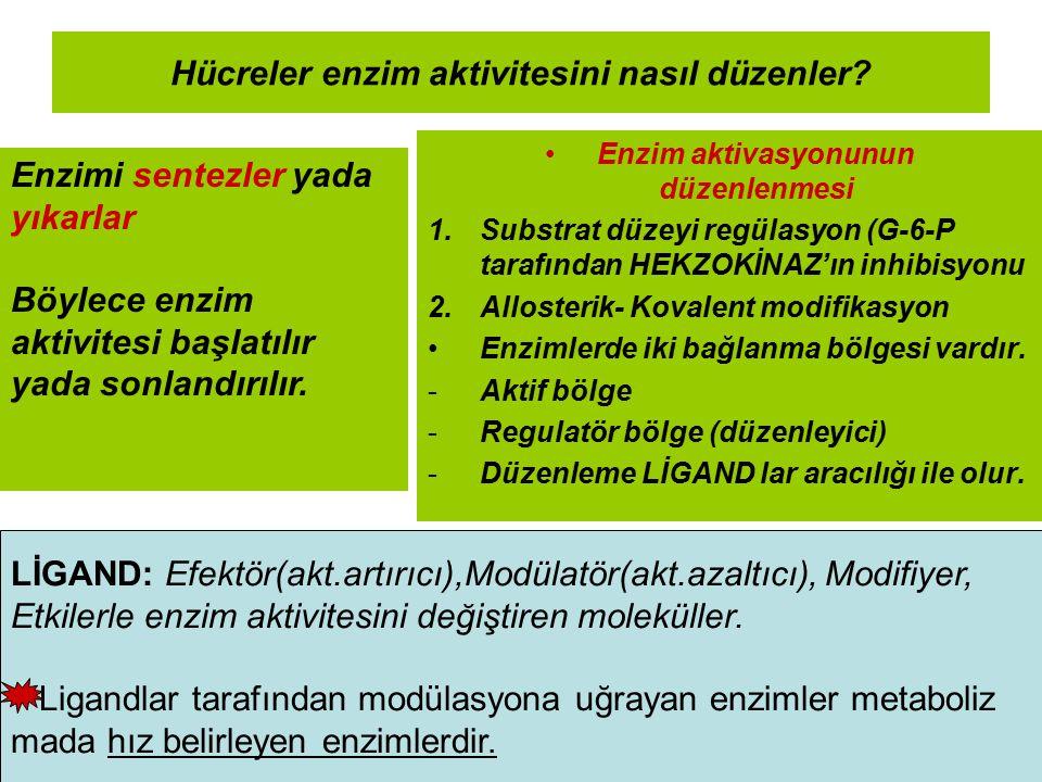 Hücreler enzim aktivitesini nasıl düzenler? Enzim aktivasyonunun düzenlenmesi 1.Substrat düzeyi regülasyon (G-6-P tarafından HEKZOKİNAZ'ın inhibisyonu