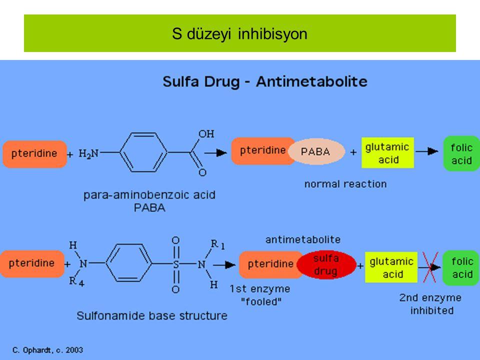 S düzeyi inhibisyon