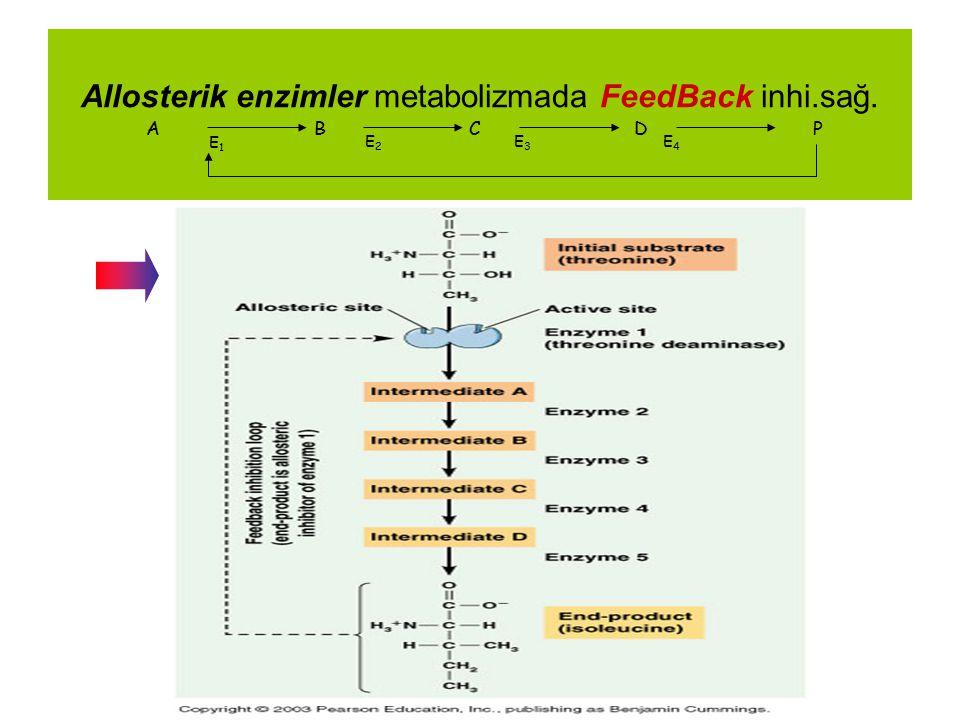Allosterik enzimler metabolizmada FeedBack inhi.sağ. A B C D P E1E1 E2E2 E3E3 E4E4