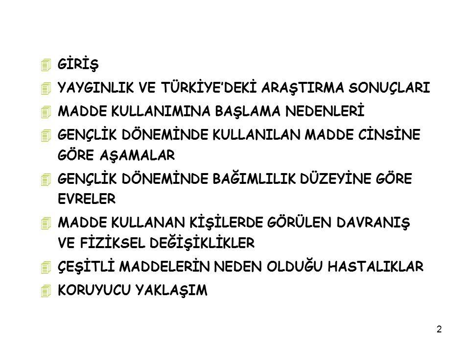 3 4Madde kullanımı sorununun genel boyutu 4 Gelişmiş ülkelerdeki ve Türkiye'deki genel tutum ve toplumsal bakış açısı 4 Gençlik döneminin önemi 4 Aile tutumu, soruna etkisi ve katkısı