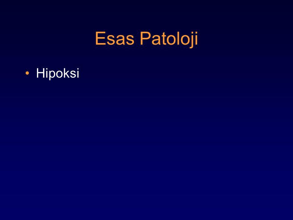 Esas Patoloji Hipoksi