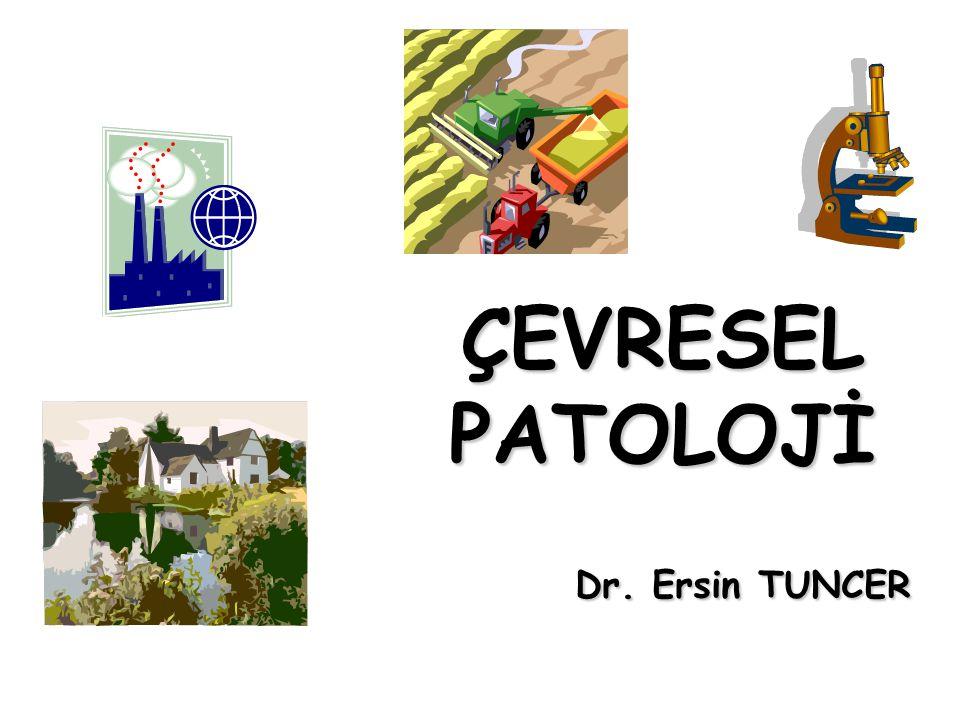 ÇEVRESEL PATOLOJİ Dr. Ersin TUNCER