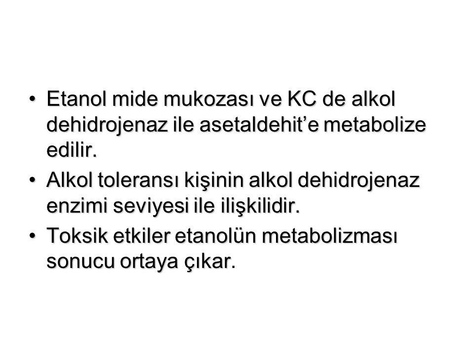 Etanol mide mukozası ve KC de alkol dehidrojenaz ile asetaldehit'e metabolize edilir.Etanol mide mukozası ve KC de alkol dehidrojenaz ile asetaldehit'