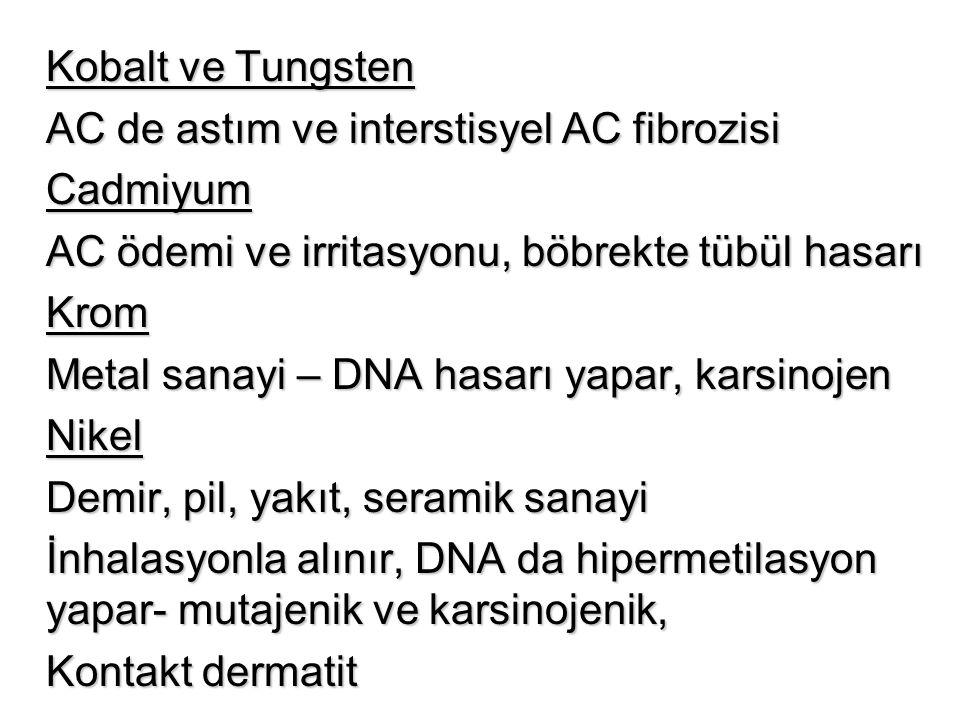 Kobalt ve Tungsten AC de astım ve interstisyel AC fibrozisi Cadmiyum AC ödemi ve irritasyonu, böbrekte tübül hasarı Krom Metal sanayi – DNA hasarı yap
