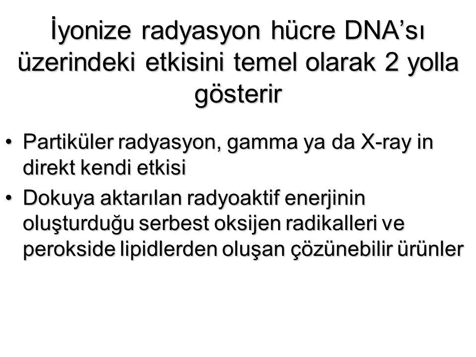 İyonize radyasyon hücre DNA'sı üzerindeki etkisini temel olarak 2 yolla gösterir Partiküler radyasyon, gamma ya da X-ray in direkt kendi etkisiPartikü