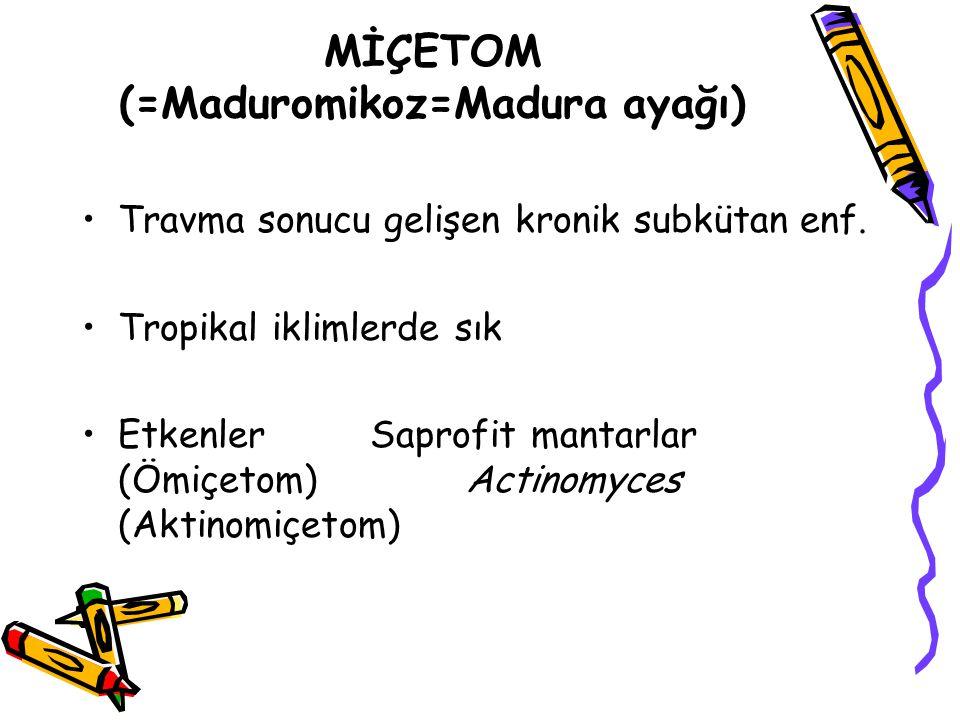 MİÇETOM (=Maduromikoz=Madura ayağı) Travma sonucu gelişen kronik subkütan enf. Tropikal iklimlerde sık EtkenlerSaprofit mantarlar (Ömiçetom) Actinomyc