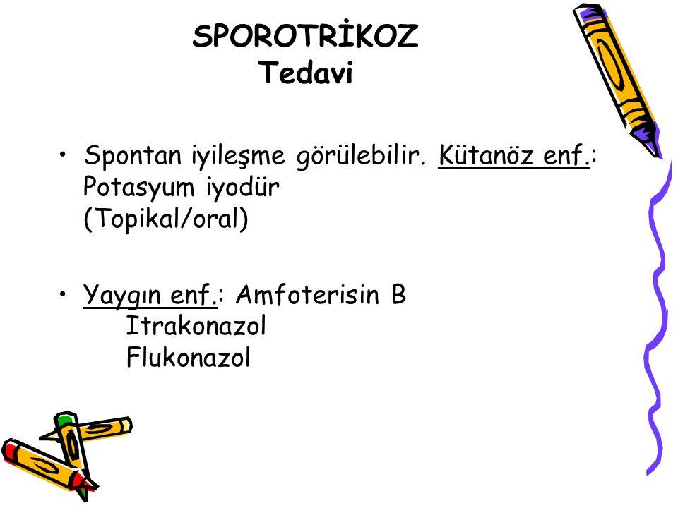 SPOROTRİKOZ Tedavi Spontan iyileşme görülebilir. Kütanöz enf.: Potasyum iyodür (Topikal/oral) Yaygın enf.: Amfoterisin B Itrakonazol Flukonazol