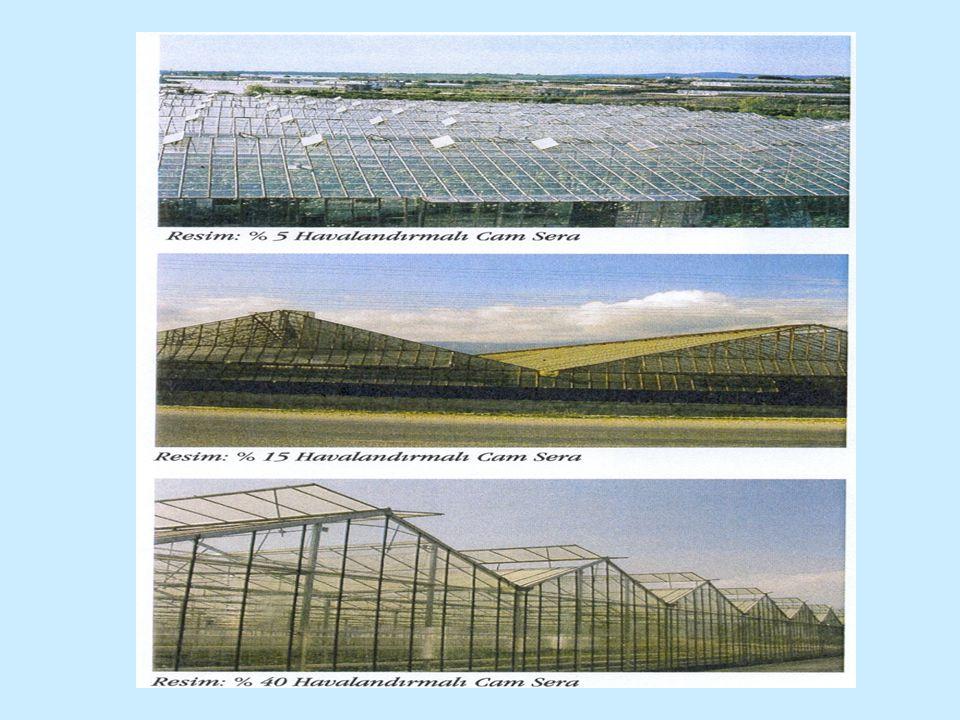 Venlo tipi cam sera Hollanda'da geliştirilen bu sera tipinde her bir açıklıkta iki çatı ve ortada bir oluk vardır.