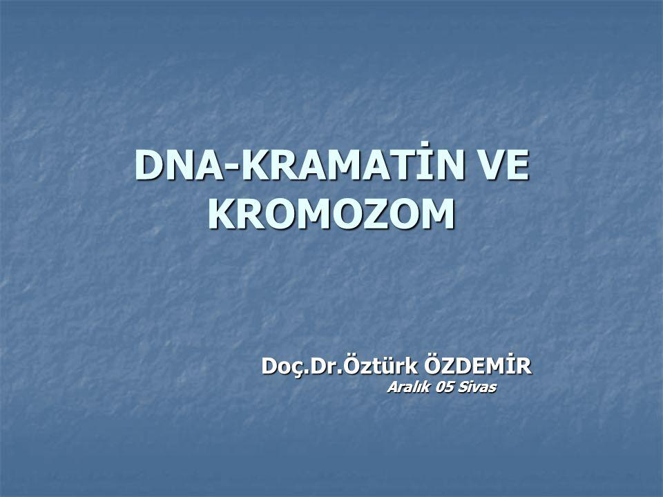 DNA-KRAMATİN VE KROMOZOM Doç.Dr.Öztürk ÖZDEMİR Doç.Dr.Öztürk ÖZDEMİR Aralık 05 Sivas Aralık 05 Sivas