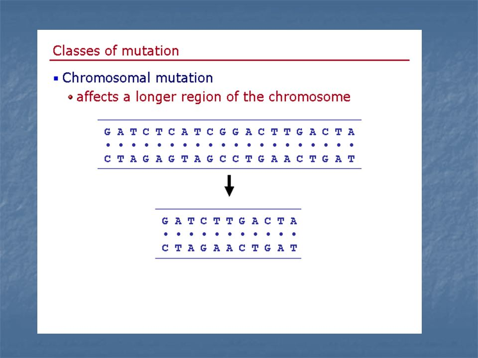 Slide9 of 28 Genetics home page netics home page
