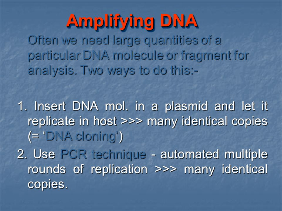 Amplifying DNA Often we need large quantities of a particular DNA molecule or fragment for analysis. Two ways to do this:- Often we need large quantit