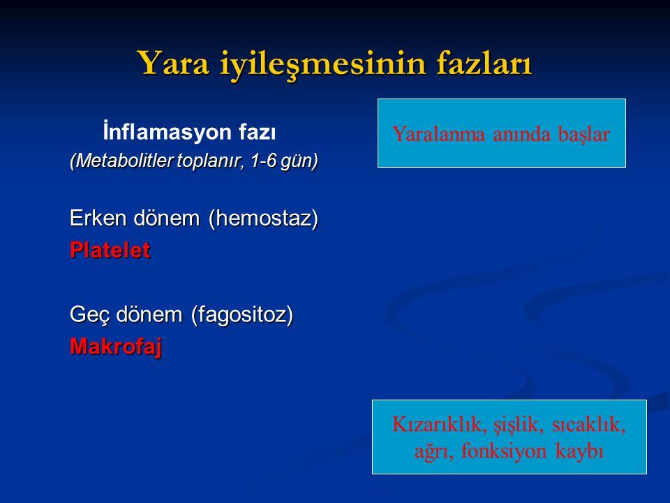 Yara iyileşmesinin fazları İnflamasyon fazı (Metabolitler toplanır, 1-6 gün) Erken dönem (hemostaz) Platelet Geç dönem (fagositoz) Makrofaj Yaralanma anında başlar Kızarıklık, şişlik, sıcaklık, ağrı, fonksiyon kaybı