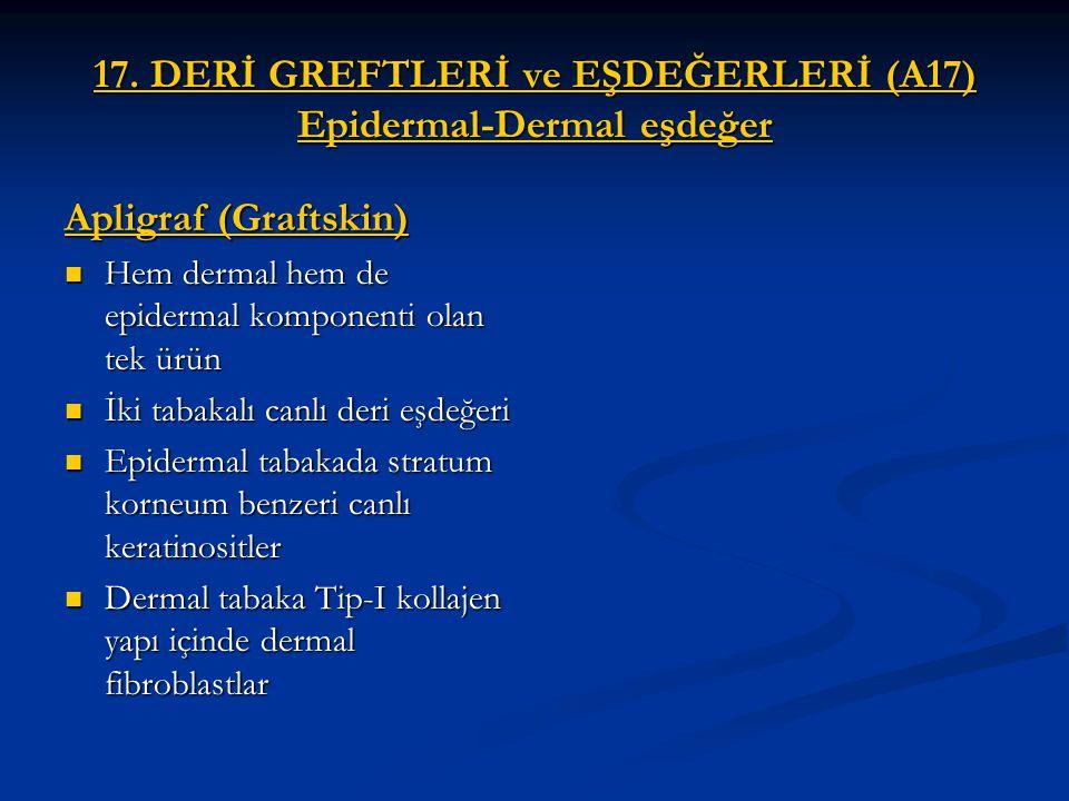 17. DERİ GREFTLERİ ve EŞDEĞERLERİ (A17) Epidermal-Dermal eşdeğer Apligraf (Graftskin) Hem dermal hem de epidermal komponenti olan tek ürün Hem dermal