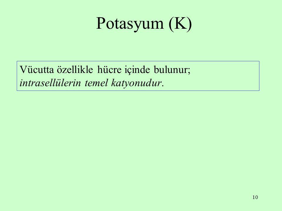 10 Potasyum (K) Vücutta özellikle hücre içinde bulunur; intrasellülerin temel katyonudur.