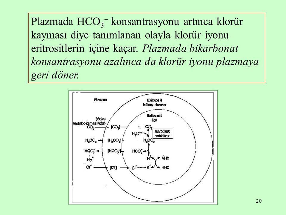 20 Plazmada HCO 3  konsantrasyonu artınca klorür kayması diye tanımlanan olayla klorür iyonu eritrositlerin içine kaçar. Plazmada bikarbonat konsantr