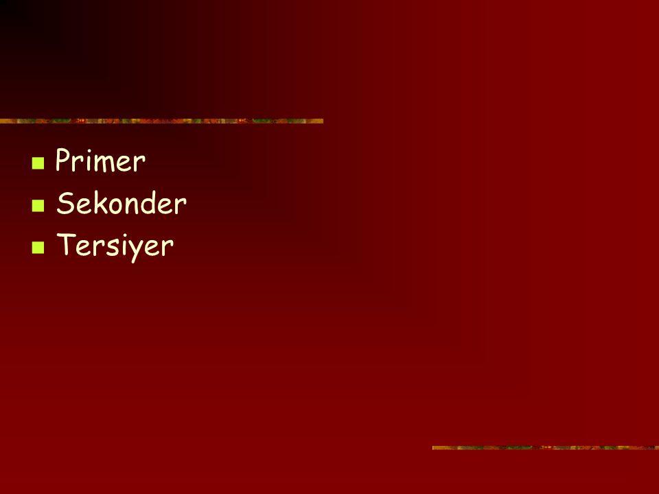 Primer Sekonder Tersiyer
