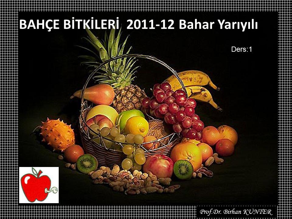Prof.Dr. Birhan KUNTER BAHÇE BİTKİLERİ 2011-12 Bahar Yarıyılı Ders:1