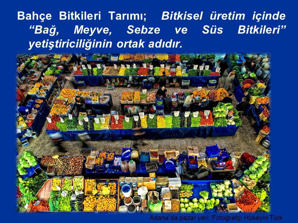 """Bahçe Bitkileri Tarımı; Bitkisel üretim içinde """"Bağ, Meyve, Sebze ve Süs Bitkileri"""" yetiştiriciliğinin ortak adıdır. Adana'da pazar yeri: Fotoğrafçı H"""