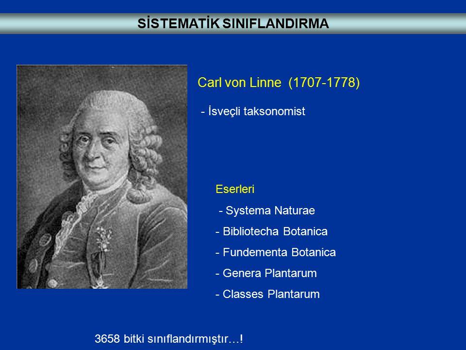 Carl von Linne (1707-1778) - İsveçli taksonomist Eserleri - Systema Naturae - Bibliotecha Botanica - Fundementa Botanica - Genera Plantarum - Classes