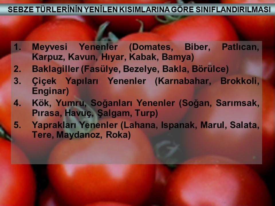 ASMALAR 1.Ürün İçin Yetiştirilen Türler Vitis vinifera L.