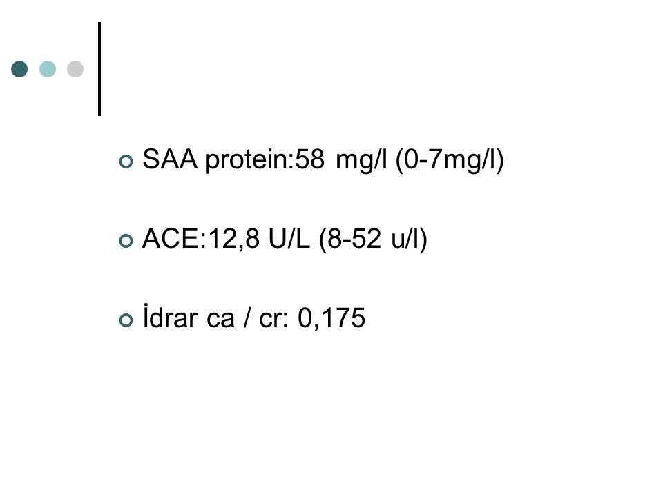 SAA protein:58 mg/l (0-7mg/l) ACE:12,8 U/L (8-52 u/l) İdrar ca / cr: 0,175