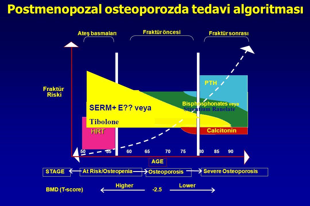 Raloxifene PTH Calcitonin HRT HRT Ateş basmaları Fraktür öncesi Fraktür sonrası Fraktür Riski AGE At Risk/Osteopenia Osteoporosis Severe Osteoporosis