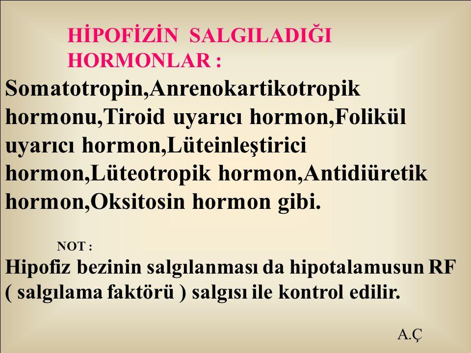 A.Ç HİPOFİZİN SALGILADIĞI HORMONLAR : Somatotropin,Anrenokartikotropik hormonu,Tiroid uyarıcı hormon,Folikül uyarıcı hormon,Lüteinleştirici hormon,Lüt