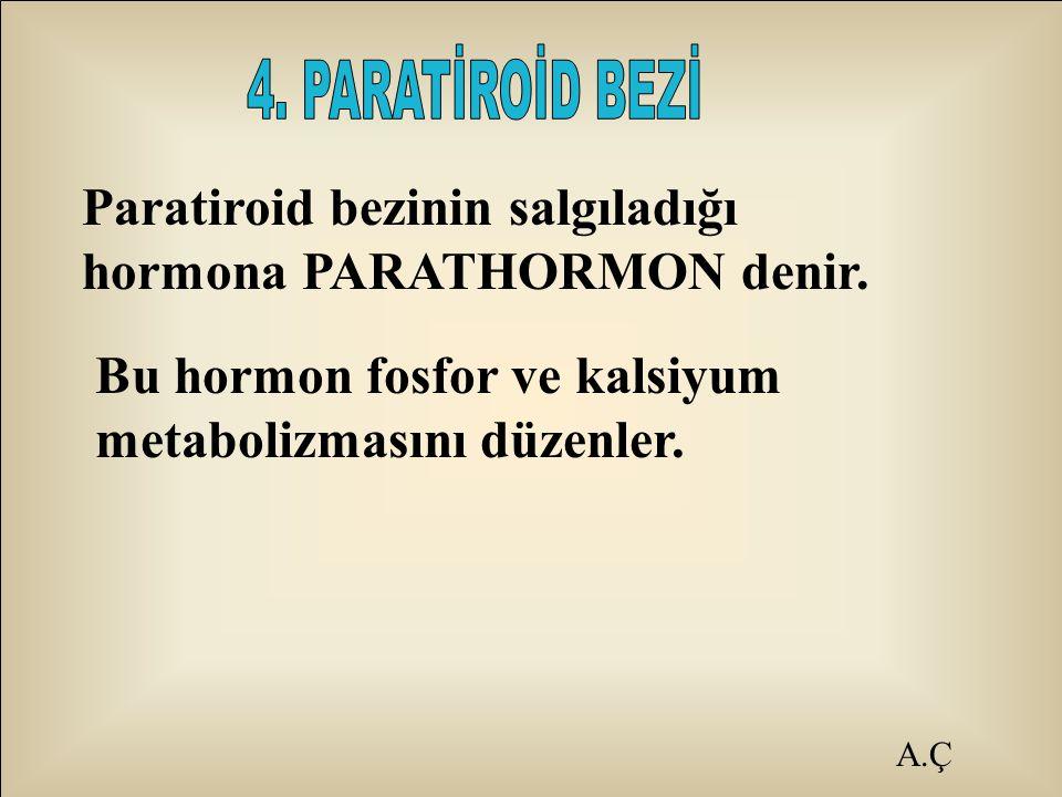 Paratiroid bezinin salgıladığı hormona PARATHORMON denir. Bu hormon fosfor ve kalsiyum metabolizmasını düzenler.
